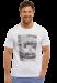 Цены на Белая мужская футболка с принтом SCHIESSER 149639шис Белый SCHIESSER  -  Модель стильного,   белого цвета  -  Горловина круглая,   отделана кантиком,   не расстягивается  -  Стирать только в теплой воде Оригинальная мужская футболка от компании Schiesser украшена при