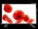 Цены на Telefunken TF - LED32S40T2 Поддерживаемые форматы файлов  -  MKV,   Поддержка цифровых стандартов  -  DVB - T,   Высота с подставкой  -  46.6,   Стандарты крепления VESA  -  100х100,   Угол обзора по вертикали  -  178,   Разъем для наушников  -  Есть,   Выход аудио коаксиальный  -  Ес