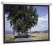 Цены на Projecta SlimScreen 160x123 Datalux (10200078) Артикул производителя 44104 Диагональ 72 дюйм. Длина экрана 160 см Высота экрана 123 см Поверхность экрана Matte White Вес 6 кг Projecta SlimScreen 160x123 Datalux (10200078)