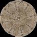 Цены на Керамическая плитка Atlantic Tiles Inserto Medina Декор 12x12