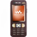 Цены на Sony Ericsson W890i Brown