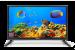 "Цены на HARPER Телевизор LED 20"" Harper 20R470 Черный,   HD Ready,   HDMI,   USB,   VGA Black,   16:9,   1366x768,   40000:1,   200 кд/ м2,   VGA,   HDMI,   DVB - T 20R470 Контраст: 40 000:1;  Яркость: 200;  Соотношение сторон: 16:9;  Размер экрана по диагонали: 20"" (50.8 см)"