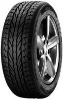 Фото Apollo Alnac Winter (175/70R13 82T)