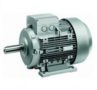 Siemens 1LA7106-2AA1
