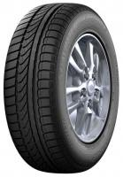 Dunlop SP Winter Response (175/70R14 88T)