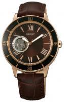 Orient DB0B002T