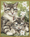 Цены на Набор для рисования Schipper 24х30 см Кошка с котенком 6/ 6
